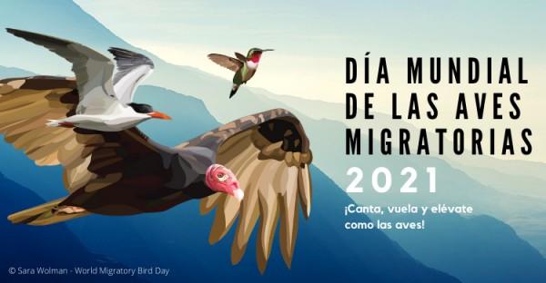 dia de las aves migratorias