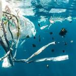 El 80 % de la basura marina es plástico, sobre todo bolsas y botellas
