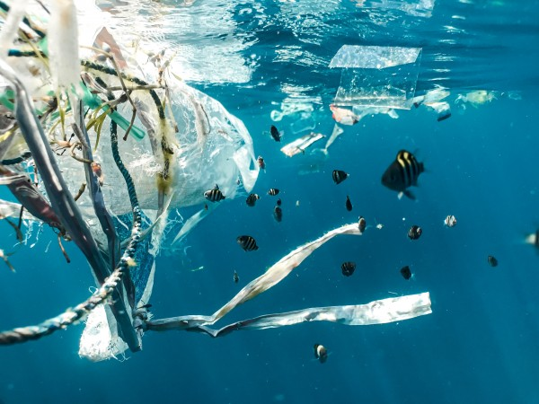 basura marina plástico