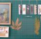 Taller Ambiental: Iniciación al prensado botánico