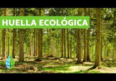 ¿Qué es la HUELLA ECOLÓGICA? CALCULAR huella ecológica