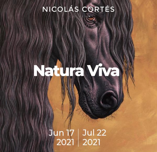 Natura_Viva