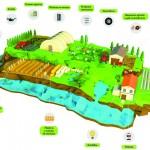 Guía para la gestión de residuos agrarios
