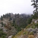El largo viaje de la Sierra de las Nieves llega a su fin